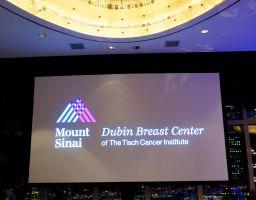 Dubin Breast Cancer Gala